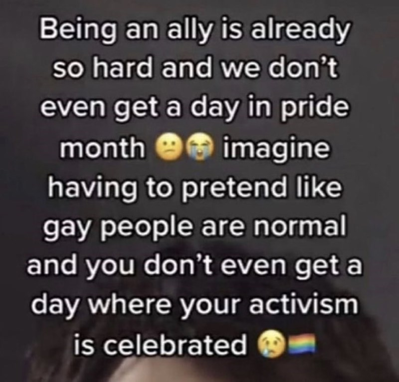 Happy - Being an ally is already so hard and we don't even get a day in pride month e9 imagine having to pretend like gay people are normal and you don't even get a day where your activism is celebrated