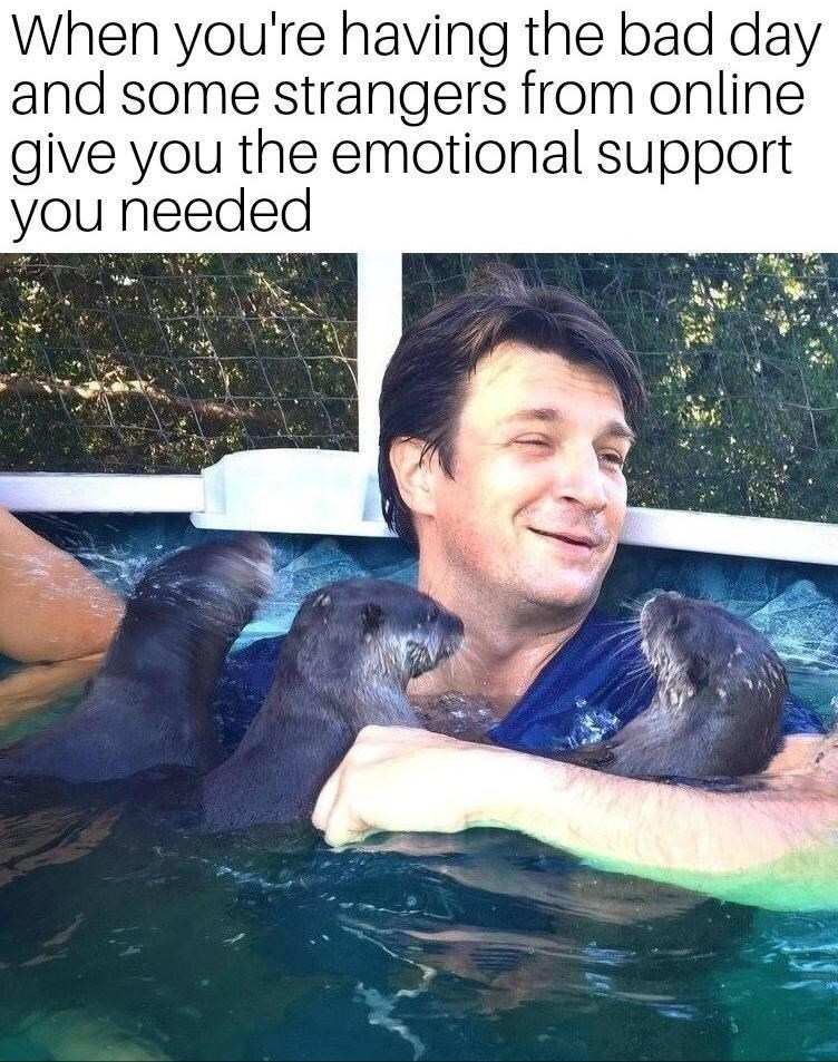 Water - When you're having the bad day and some strangers from online give you the emotional support you needed