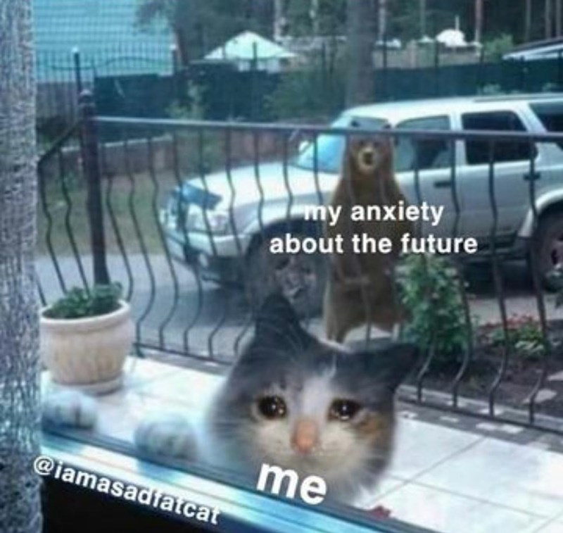 Cat - my anxiety about the future me @iamasadfatcat