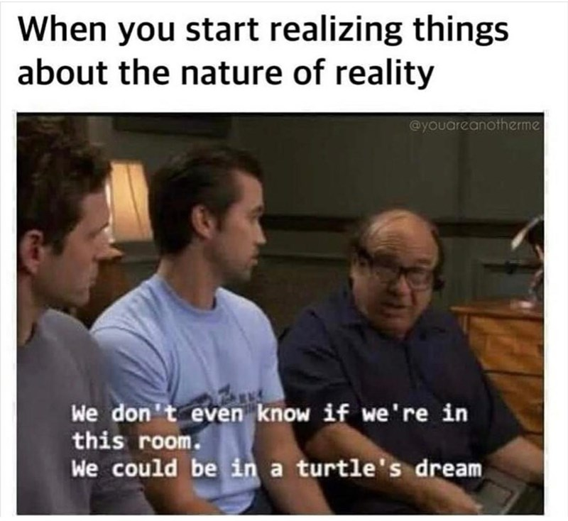 Facial expression - When you start realizing things about the nature of reality @youareanotherme We don't even know if we're in this room. We could be in a turtle's dream