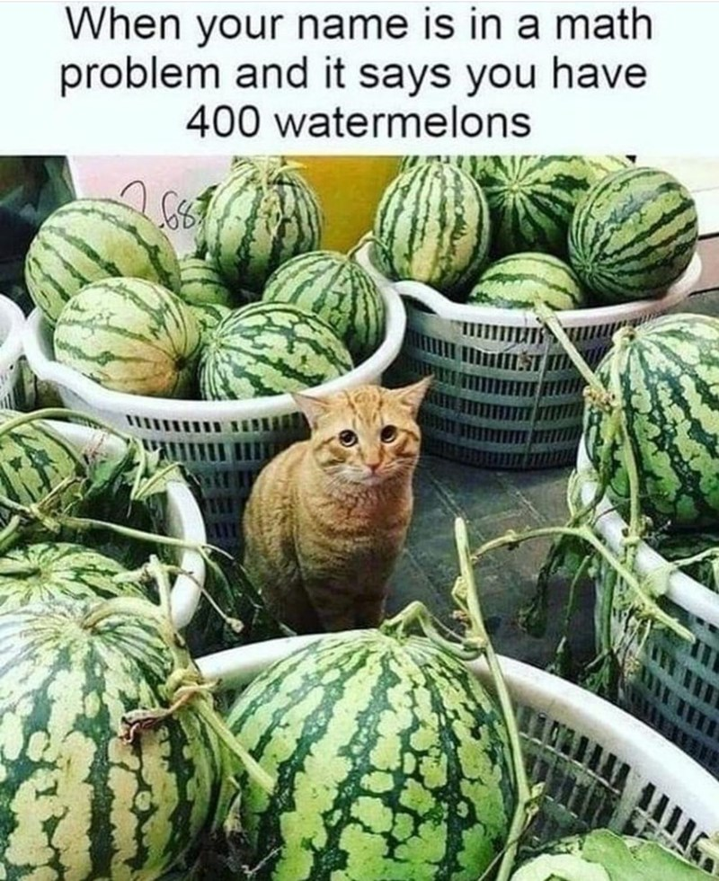 Food - When your name is in a math problem and it says you have 400 watermelons