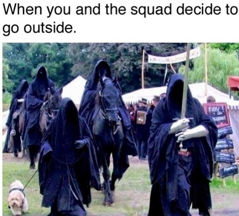 Vertebrate - When you and the squad decide to go outside.