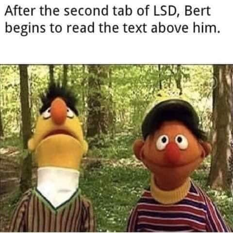 Vertebrate - After the second tab of LSD, Bert begins to read the text above him.