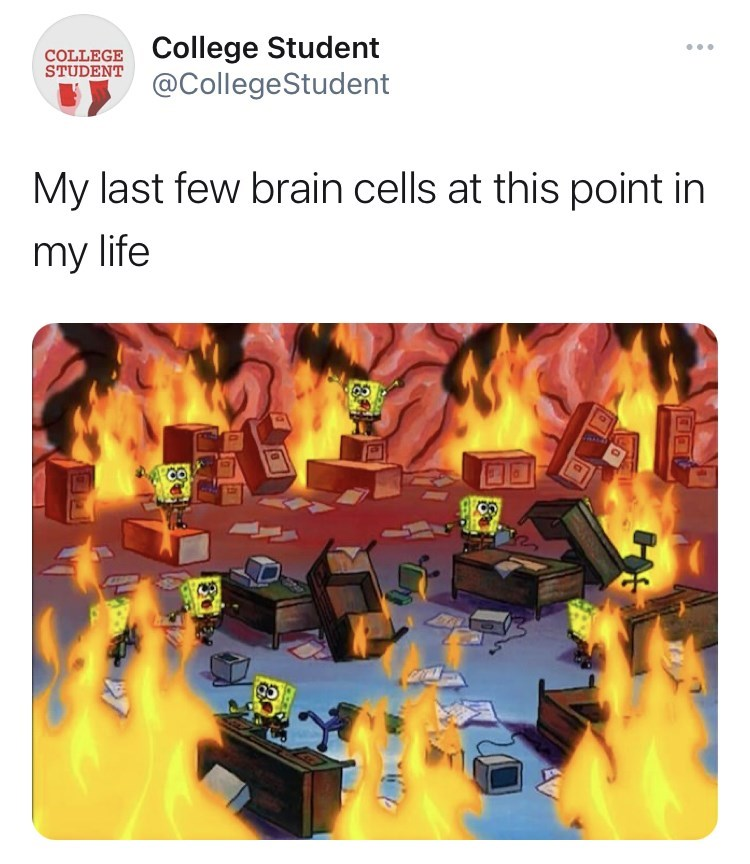 Font - COLLEGE College Student STUDENT ... @CollegeStudent My last few brain cells at this point in my life 30