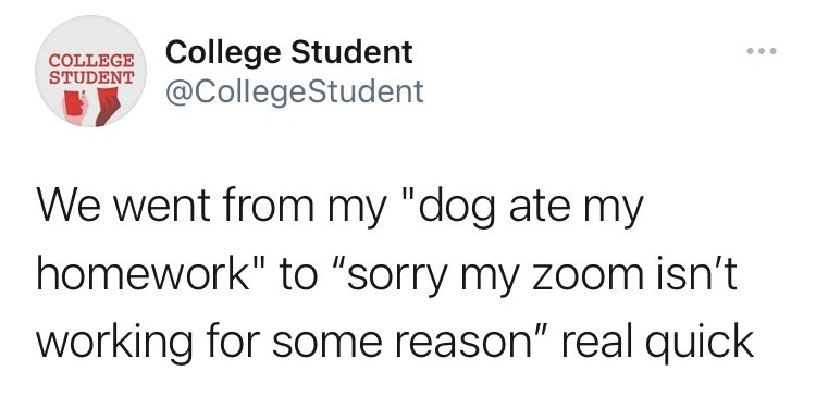"""Font - COLLEGE College Student STUDENT ... @CollegeStudent We went from my """"dog ate my homework"""" to """"sorry my zoom isn't working for some reason"""" real quick"""