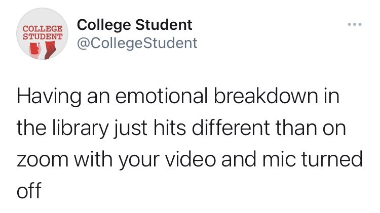 Font - COLLEGE College Student STUDENT @CollegeStudent Having an emotional breakdown in the library just hits different than on zoom with your video and mic turned off