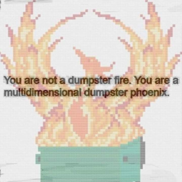 Head - You are not a dumpster fire. You are a multidimensional dumpster phoenix.
