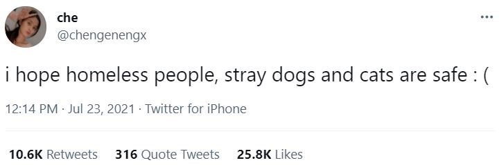 Font - che ... @chengenengx i hope homeless people, stray dogs and cats are safe : ( 12:14 PM Jul 23, 2021 · Twitter for iPhone 10.6K Retweets 316 Quote Tweets 25.8K Likes