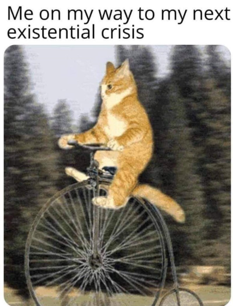 Bicycle - Me on my way to my next existential crisis