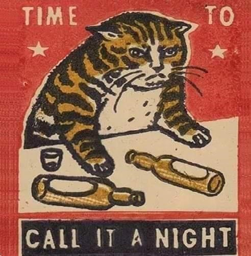 Cat - TIME TO CALL IT A NIGHT