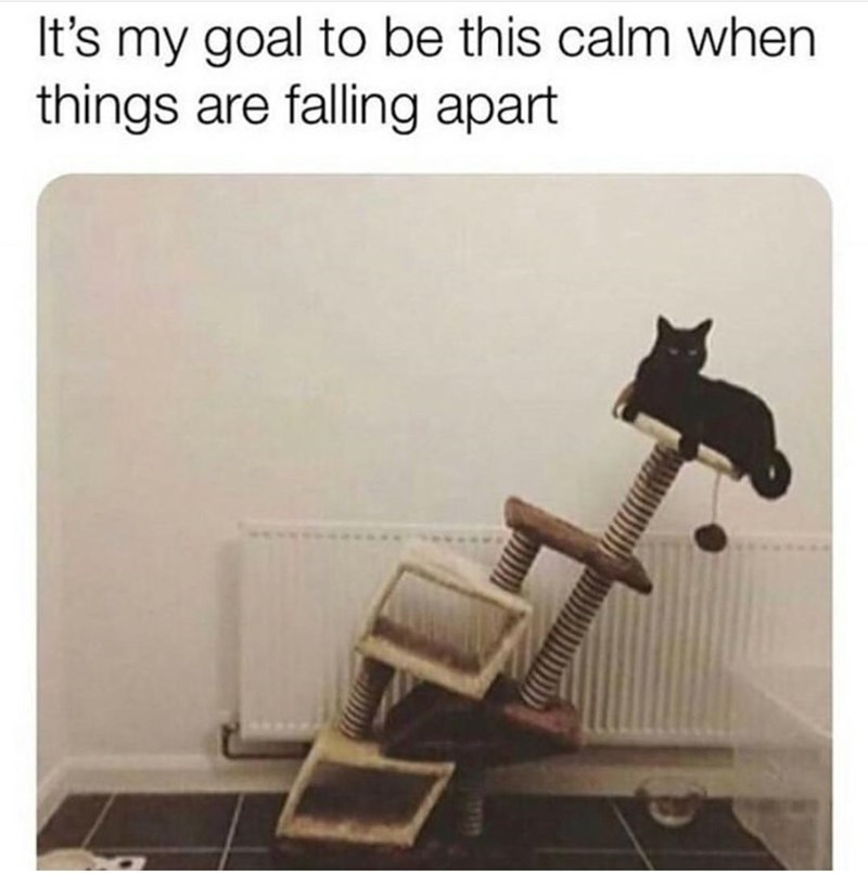 Product - It's my goal to be this calm when things are falling apart