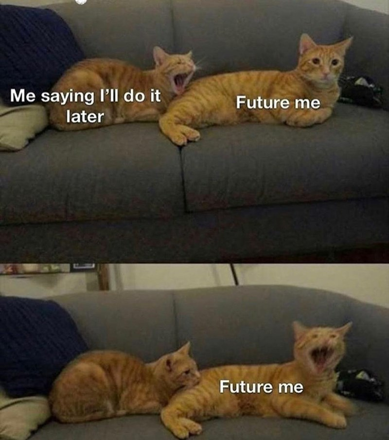 Brown - Me saying l'll do it later Future me Future me