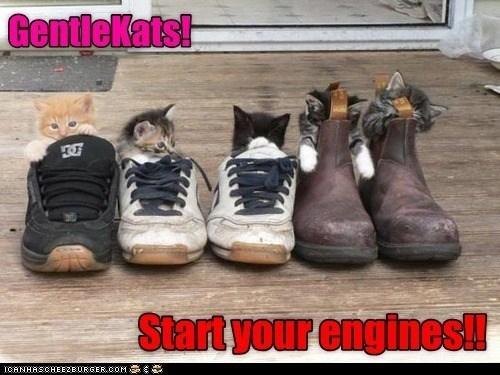 Footwear - Gentlekats Start your engines!! ICANHASCHEEZBURGER.COM