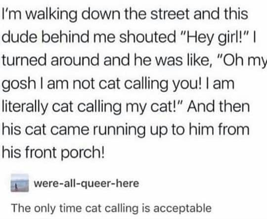 """Font - I'm walking down the street and this dude behind me shouted """"Hey girl!""""   turned around and he was like, """"Oh my gosh I am not cat calling you! I am literally cat calling my cat!"""" And then his cat came running up to him from his front porch! were-all-queer-here The only time cat calling is acceptable"""