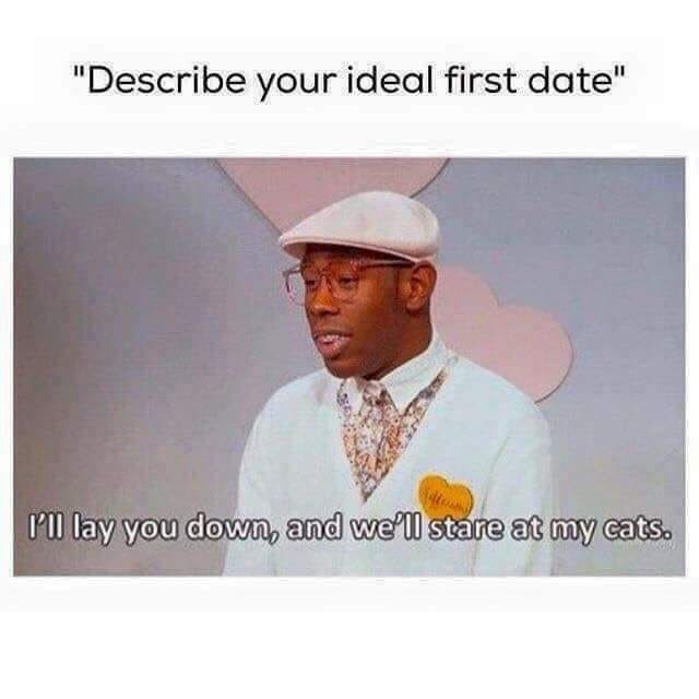"""Chin - """"Describe your ideal first date"""" I'll lay you down, and we'll stare at my cats."""