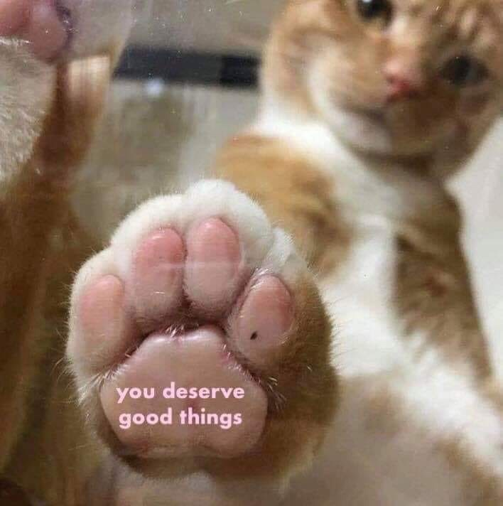 Nose - you deserve good things