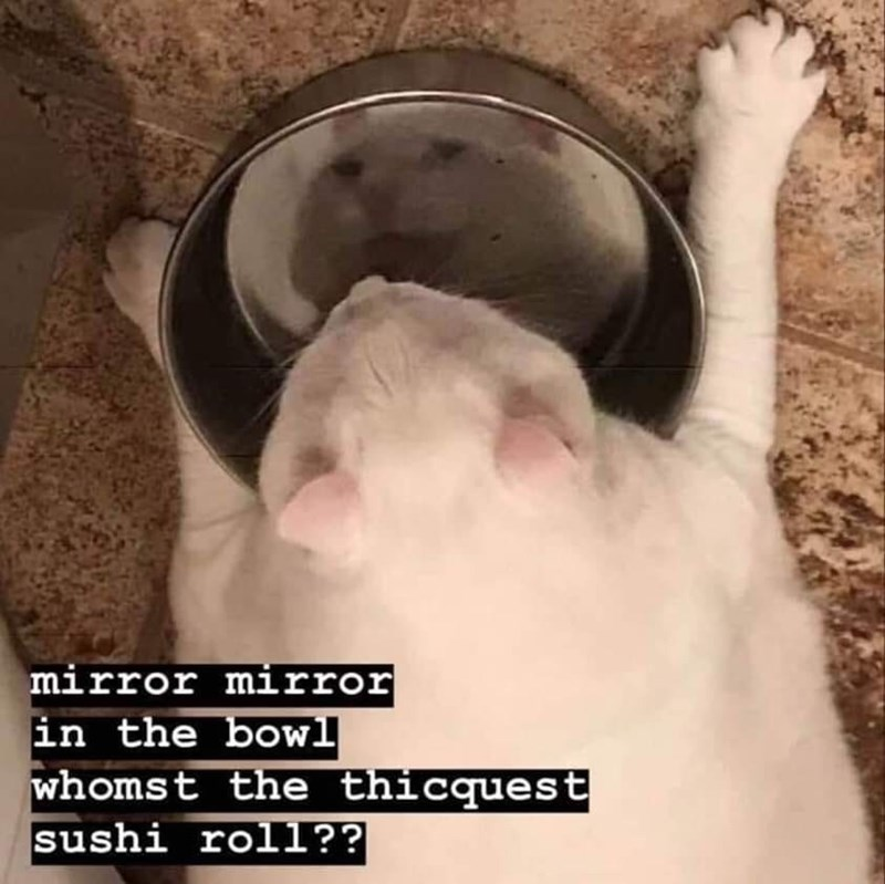 Hand - mirror mirror in the bowl whomst the thicquest sushi roll??