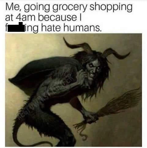 Working animal - Me, going grocery shopping at 4am because l Íing hate humans.