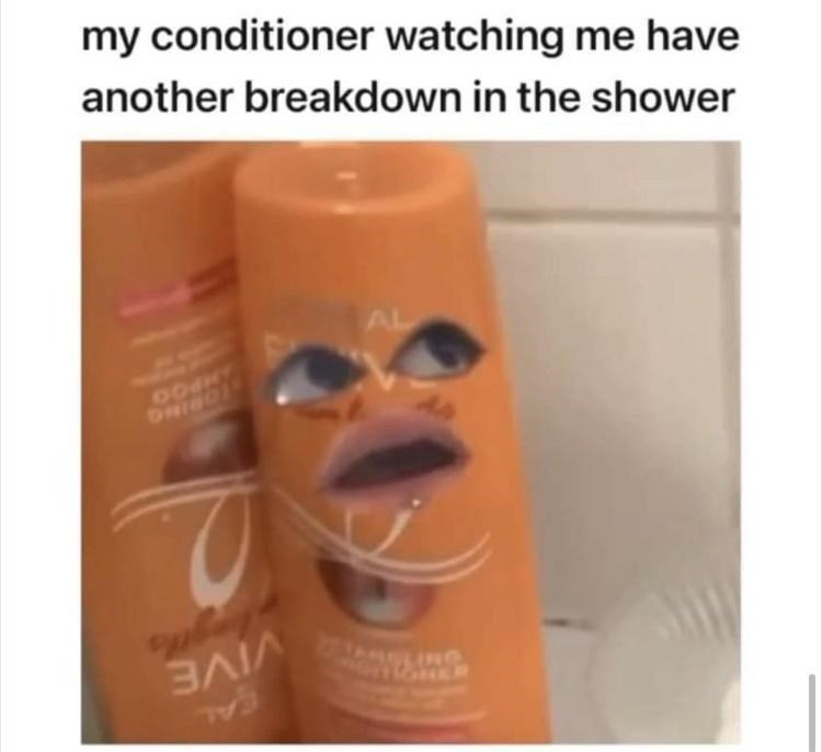 Liquid - my conditioner watching me have another breakdown in the shower AL AIVE INO GAL