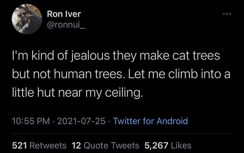 Mammal - Ron Iver @ronnui_ I'm kind of jealous they make cat trees but not human trees. Let me climb into a little hut near my ceiling. 10:55 PM · 2021-07-25 · Twitter for Android 521 Retweets 12 Quote Tweets 5,267 Likes