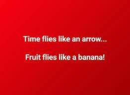 Rectangle - Time flies like an arrow... Fruit flies like a banana!