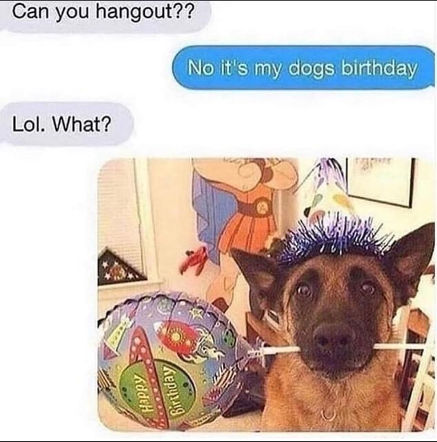 Product - Can you hangout?? No it's my dogs birthday Lol. What? Birthday