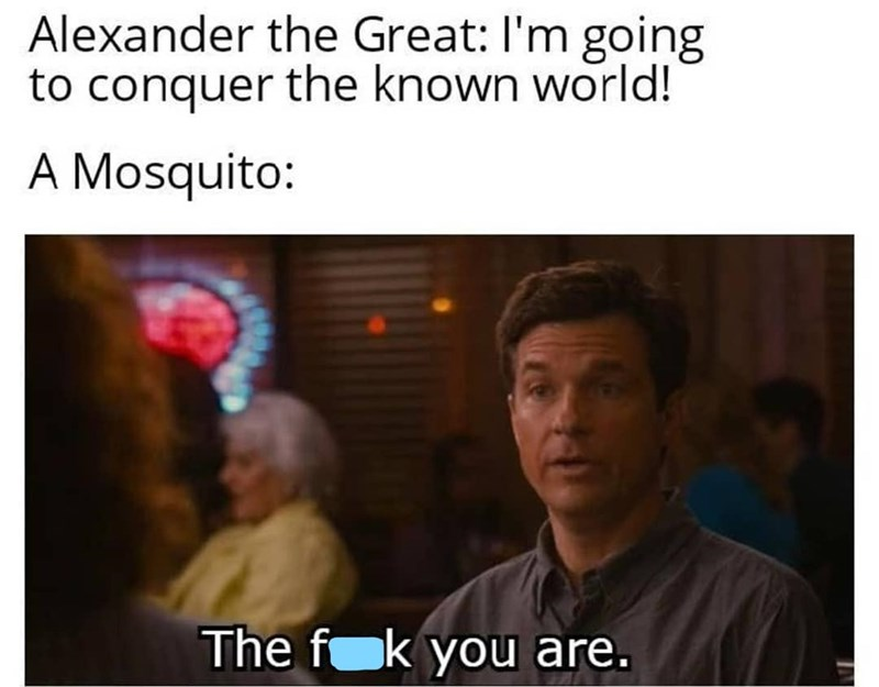 Forehead - Alexander the Great: I'm going to conquer the known world! A Mosquito: The fok you are.