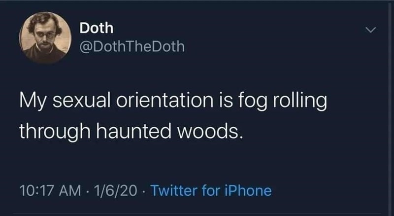 Font - Doth @DothTheDoth My sexual orientation is fog rolling through haunted woods. 10:17 AM - 1/6/20 · Twitter for iPhone