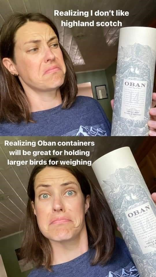 Forehead - Realizing I don't like highland scotch OBAN 14 Realizing Oban containers will be great for holding larger birds for weighing OBAN SINGLE N