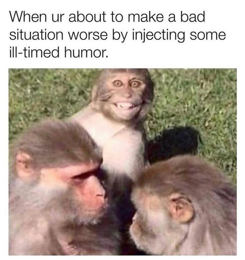 Primate - When ur about to make a bad situation worse by injecting some ill-timed humor.