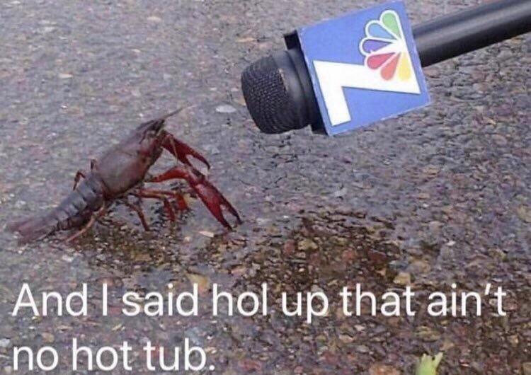 Arthropod - And I said hol up that ain't no hot tub.