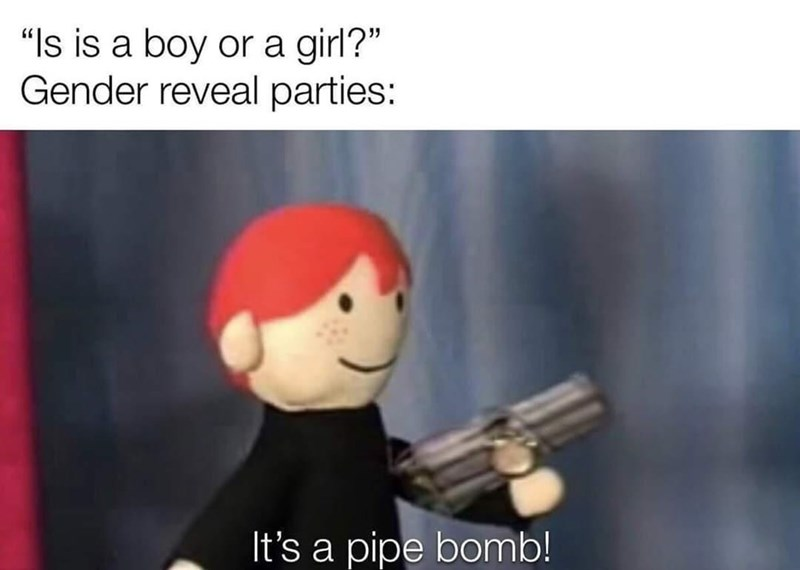 """Toy - """"Is is a boy or a girl?"""" Gender reveal parties: It's a pipe bomb!"""