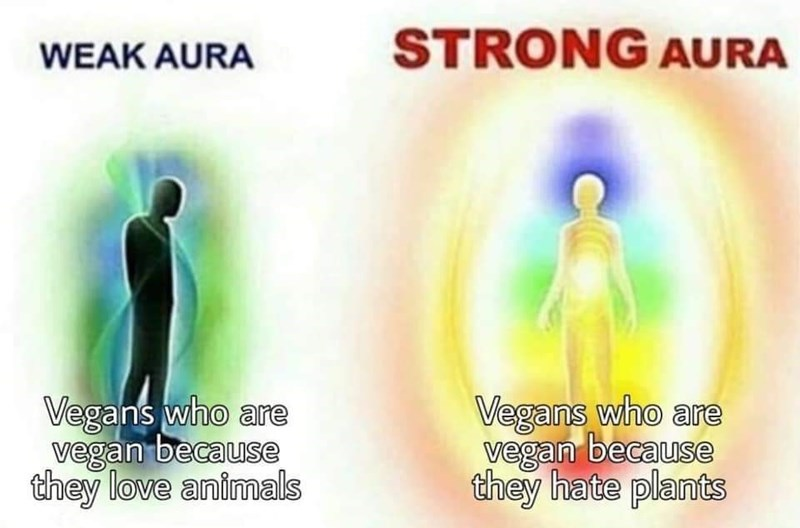 Head - WEAK AURA STRONG AURA Vegans who are vegan because they love animals Vegans who are vegan because they hate plants