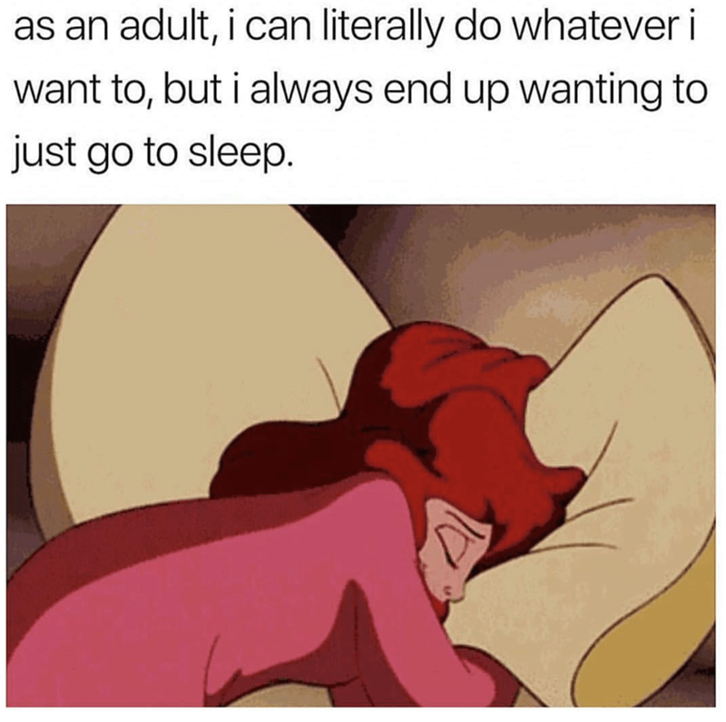 Cartoon - as an adult, i can literally do whatever i want to, but i always end up wanting to just go to sleep.