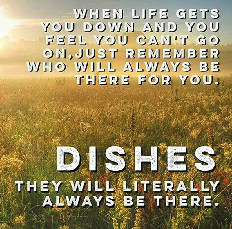 Vertebrate - WHEN LIFE GETS YOU DOWN AND YOU FEEL YOU CAN'T GO ON, JUST REMEMBER WHO WILL ALWAYS BE THERE FOR YOU. DISHES THEY WILL LITERALLY ALWAYS BE THERE.