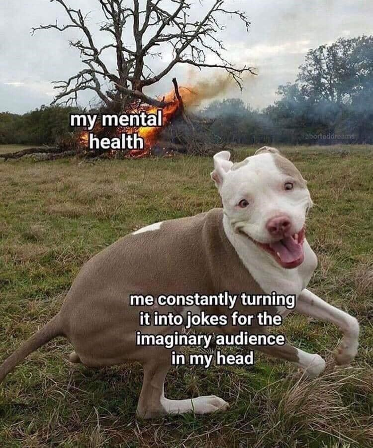 Dog - my mental health aborteddreams me constantly turning it into jokes for the imaginary audience in my head