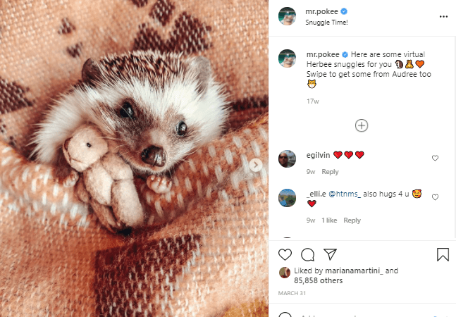 Erinaceidae - mr.pokee O ... Snuggle Time! mr.pokee e Here are some virtual Herbee snuggles for you 9AV Swipe to get some from Audree too 17w egilvin 9w Reply Lelli.e @htnms_ also hugs 4 u 9w 1 like Reply Liked by marianamartini_ and 85,858 others MARCH 31 :