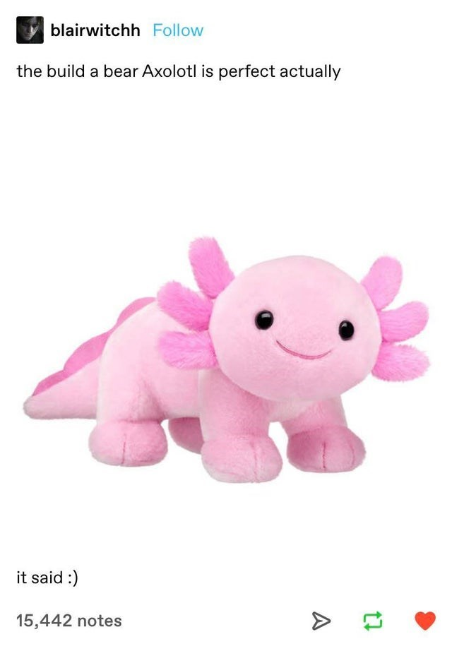 Organism - blairwitchh Follow the build a bear Axolotl is perfect actually it said :) 15,442 notes A