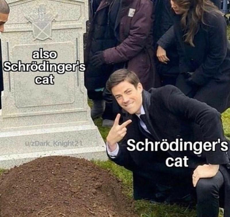 Outerwear - also Schrödinger's cat Schrödinger's cat u/zDark Knight21