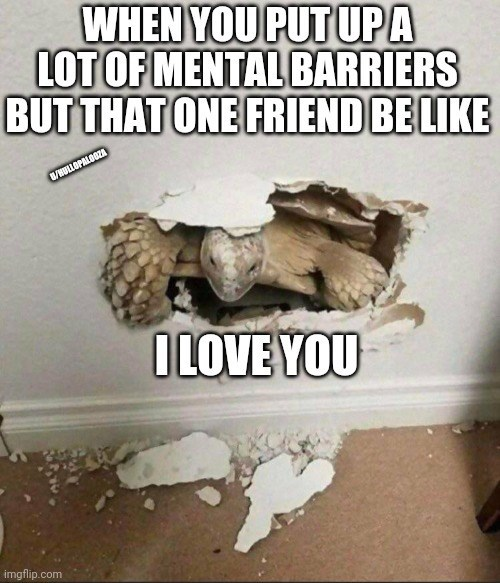 World - WHEN YOU PUT UPA LOT OF MENTAL BARRIERS BUT THAT ONE FRIEND BE LIKE WHULLOPALOOZA I LOVE YOU imgflip.com