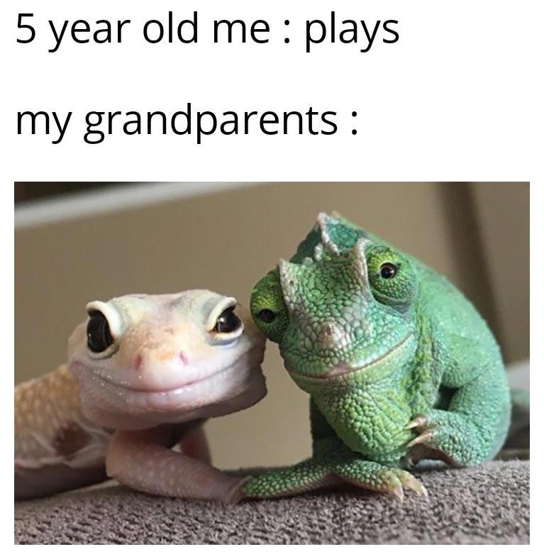 Vertebrate - 5 year old me : plays my grandparents :