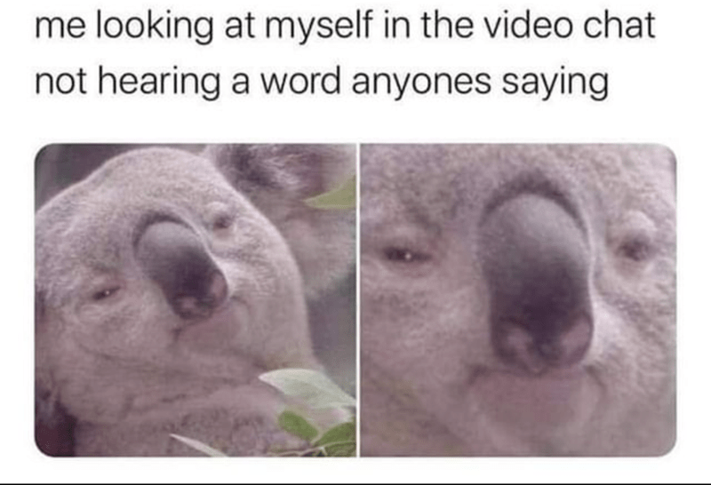Nose - me looking at myself in the video chat not hearing a word anyones saying