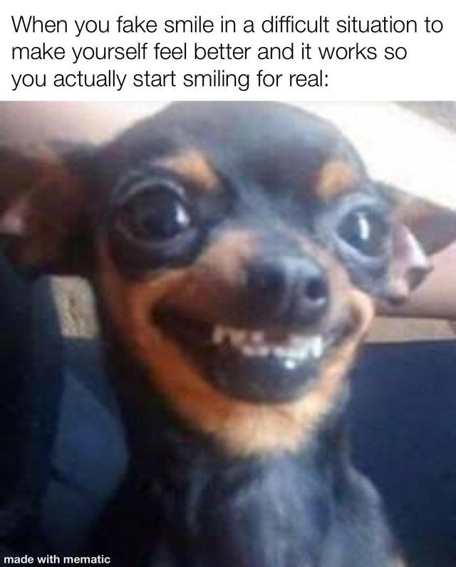 Dog - When you fake smile in a difficult situation to make yourself feel better and it works so you actually start smiling for real: made with mematic