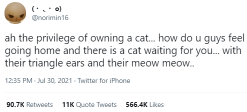 Font - (· . · o) @norimin16 ah the privilege of owning a cat.. how do u guys feel going home and there is a cat waiting for you.. with their triangle ears and their meow meow.. 12:35 PM - Jul 30, 2021 - Twitter for iPhone 90.7K Retweets 11K Quote Tweets 566.4K Likes