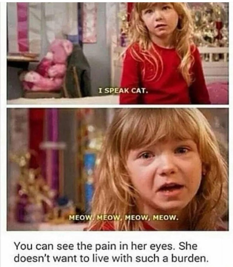 Hair - I SPEAK CAT. MEOW. MEOW, MEOW, MEOW. You can see the pain in her eyes. She doesn't want to live with such a burden.