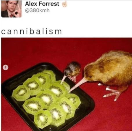 Food - Alex Forrest @380kmh cannibalis m