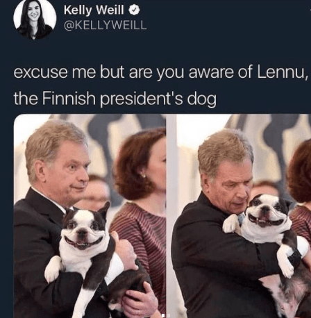 Outerwear - Kelly Weill O @KELLYWEILL excuse me but are you aware of Lennu, the Finnish president's dog