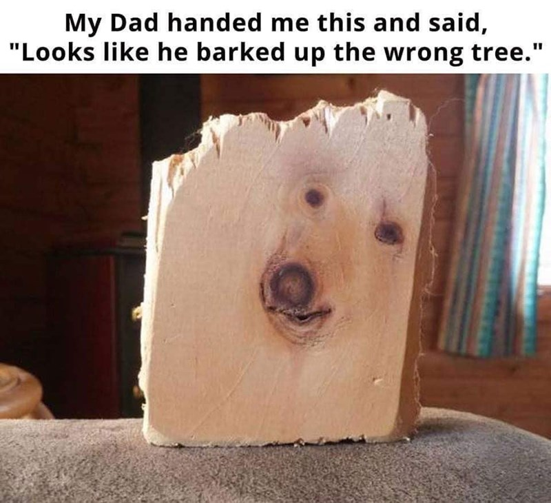 """Wood - My Dad handed me this and said, """"Looks like he barked up the wrong tree."""""""