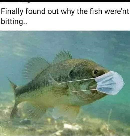 Organism - Finally found out why the fish were'nt bitting..