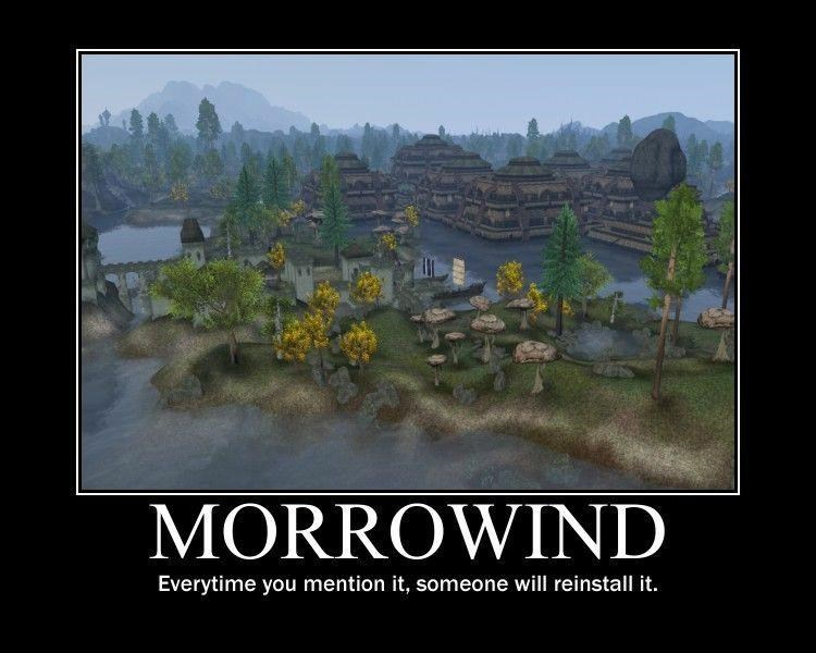 Plant - MORROWIND Everytime you mention it, someone will reinstall it.